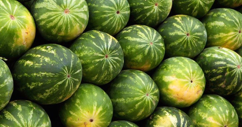 how to pick best watermelon