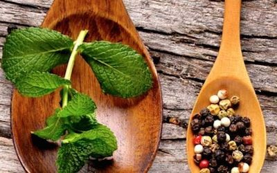 These TOP 10 Healing Herbs Are All You Need To Cure ANY Day-To-Day Ailments