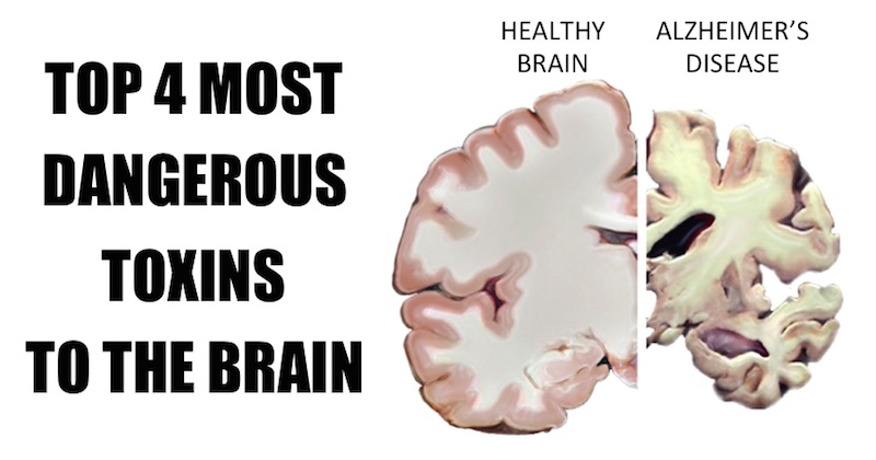 most dangerous toxins to brain