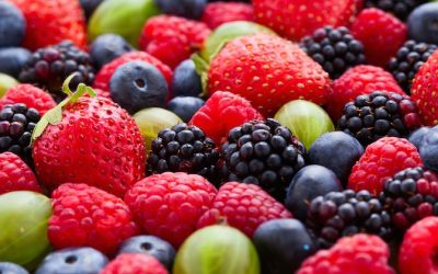 The Most Common Nutritious Berries—Vitamins, Minerals, Phytonutrients Comparison