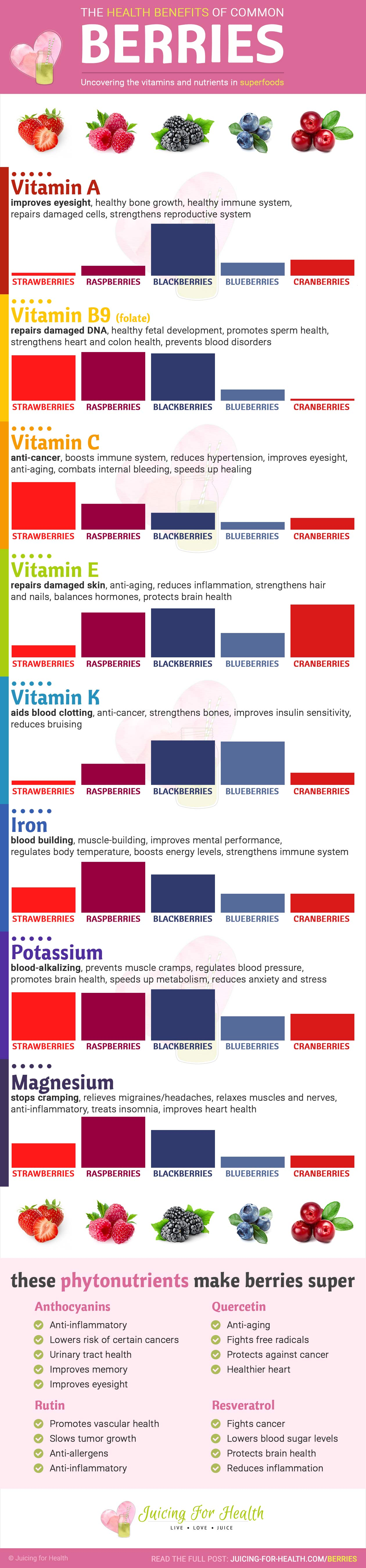 Infographic - health benefits of berries