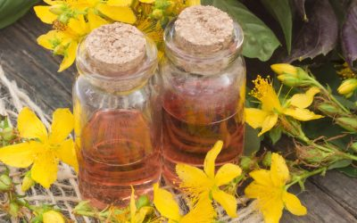 St. John's Wort Oil: The Magic Ointment That Heals Skin, Sore Muscles And Many More!