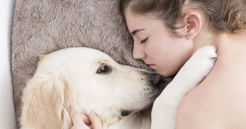 let your dog sleep with you