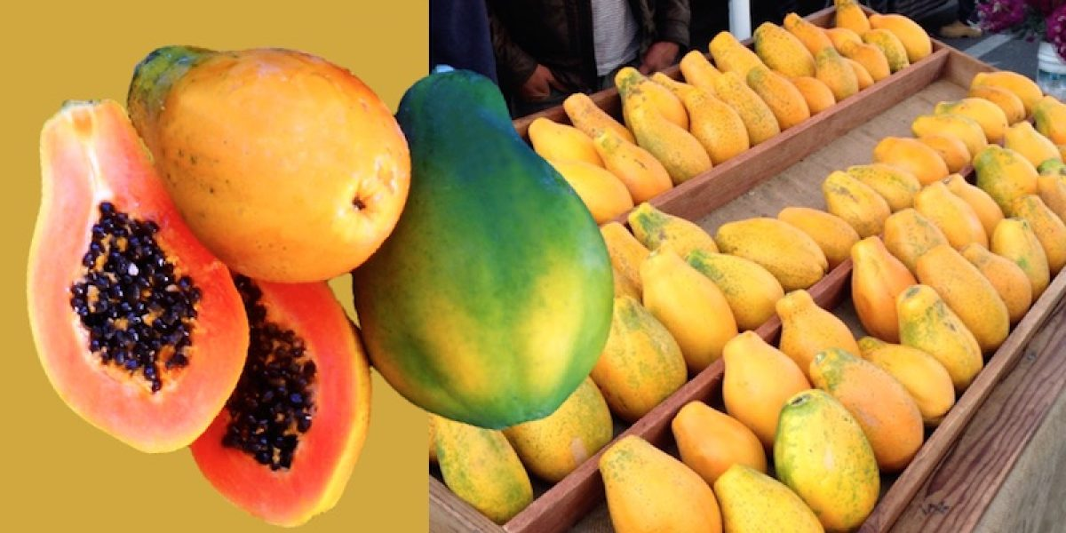 Tips On How To Choose A Papaya That Is Non-GMO