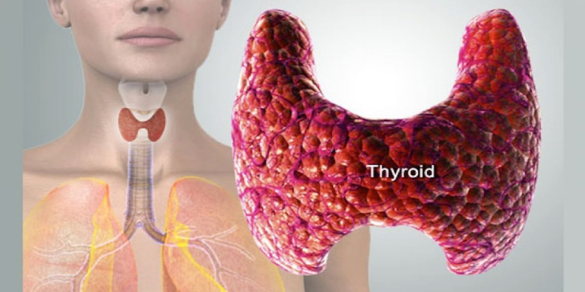 Avoid Pills! Reverse Thyroid Problems Naturally With Specific Nutrients And Herbs
