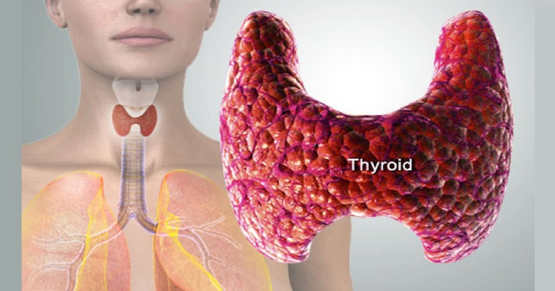 reverse thyroid problems naturally
