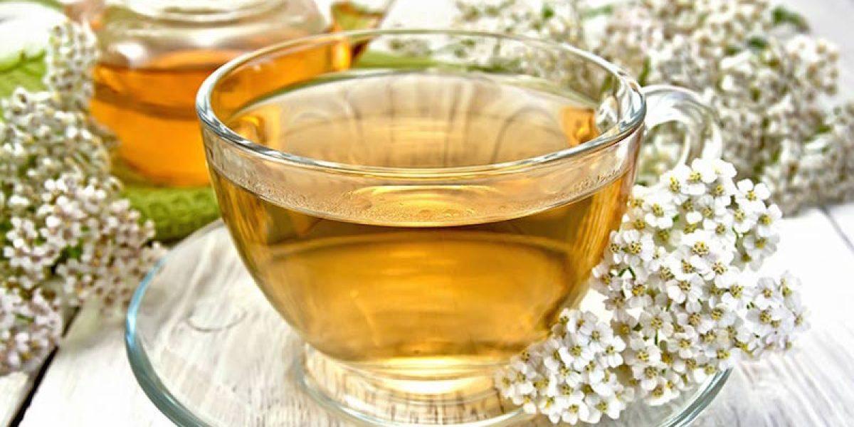 The Herbal Tea That Heals Gastritis, Stops Cramps, Regulates Menstrual Flow