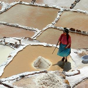 Pink Maras Salt, Peru