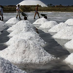 Salt workers in Trapani, Italy