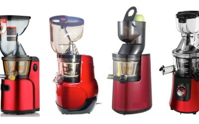 Cheap Slow/Masticating Juicers: Should You Get One?