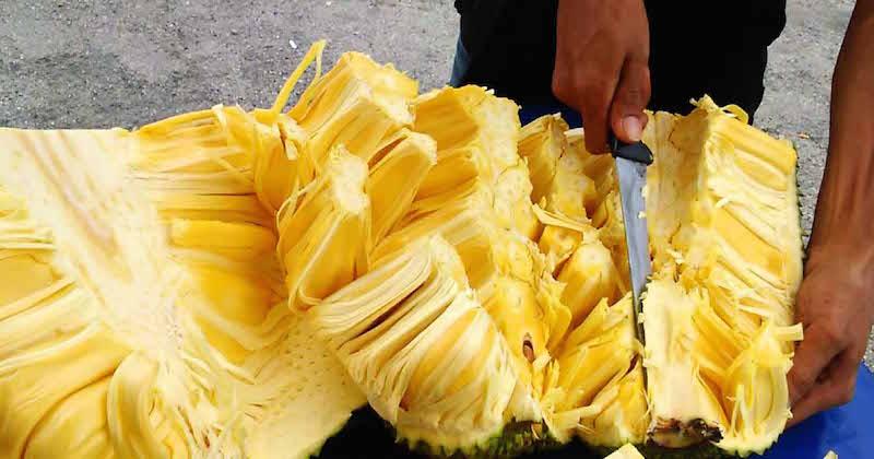 cutting jackfruit