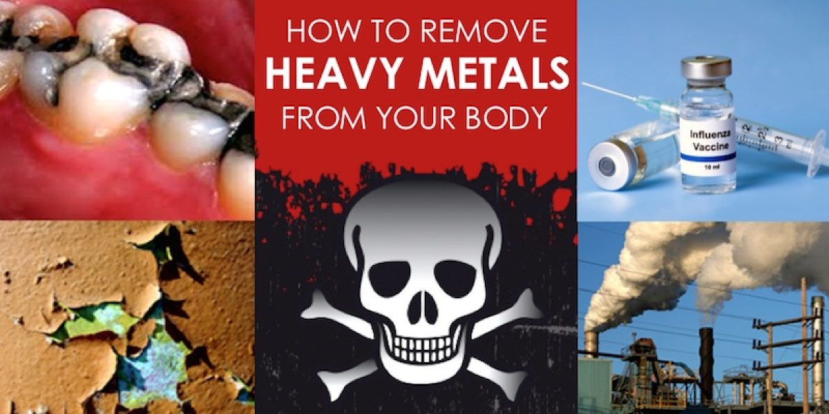 Top Strategies And Heavy Metal Chelating Foods To Treat Heavy Metal Toxicity