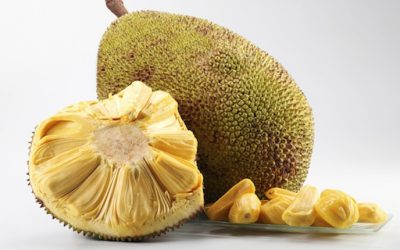 Meet The World's Largest Tree Fruit That Is An Arsenal Of Powerful Anti-Cancer Agents