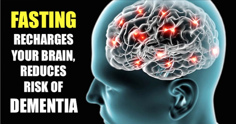 Fasting Recharges Your Brain Improve Cognitive Function