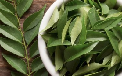 Top 6 Medicinal And Anti-Cancer Properties Of Curry Leaves
