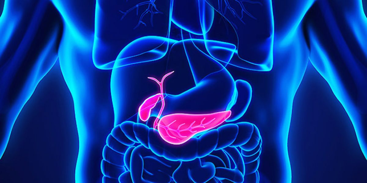 Gallbladder Removal—Should You Do It? What If You Have Already Lost It?