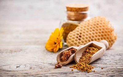 Propolis—One Of Nature's Most Powerful Antibiotics, How To Use It