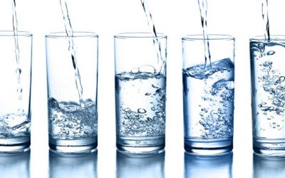 How Much Water Do You Really Need To Drink Daily To Keep Hydrated and Heal the Body of Illness?