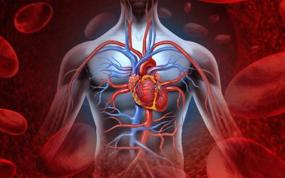 14 Warning Signs Of Poor Blood Circulation And Natural Remedies