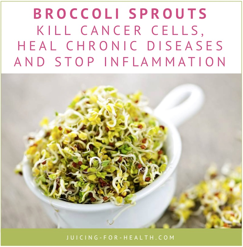 Broccoli Sprout Juice Fights Cancer How To Use It