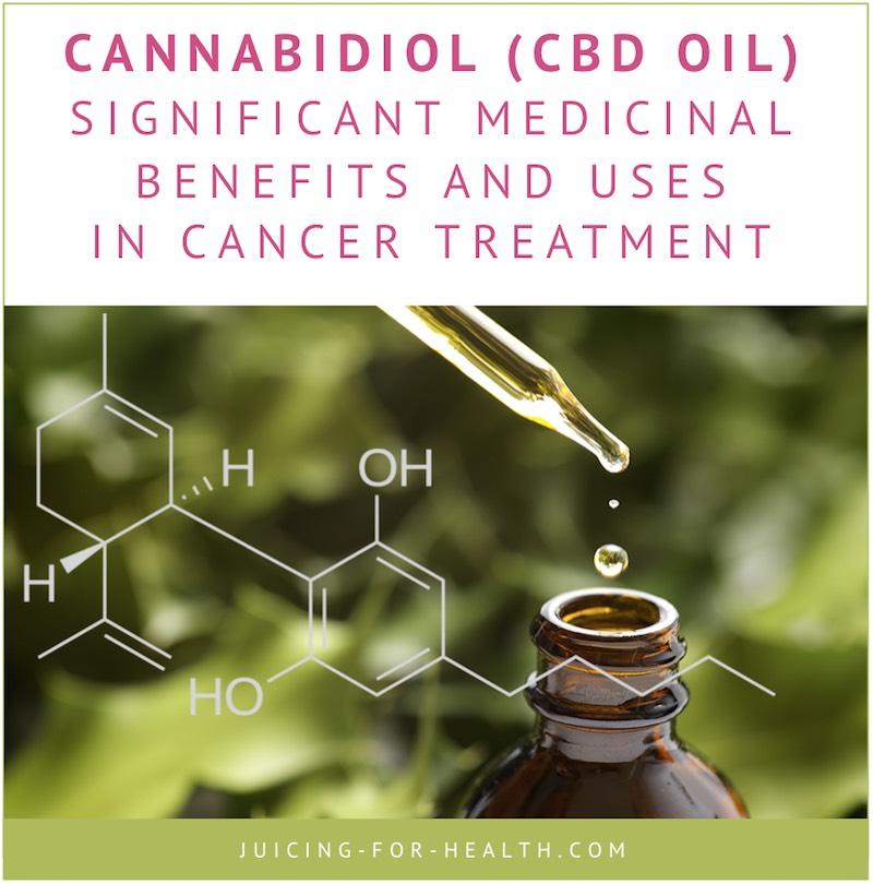Cannabis and Cancer: How Marijuana Helps the Body Heal