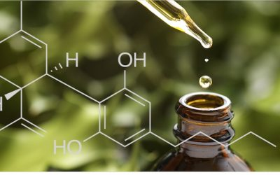 CBD Oil Protects Brain Health, Treats Epilepsy, Soothes Inflammation, & More