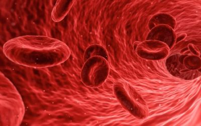 Step-by-Step Guide To Healing Anemia Naturally