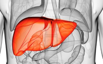 Complete Guide To Doing A Liver Cleanse And Resetting Your Internal Health Button