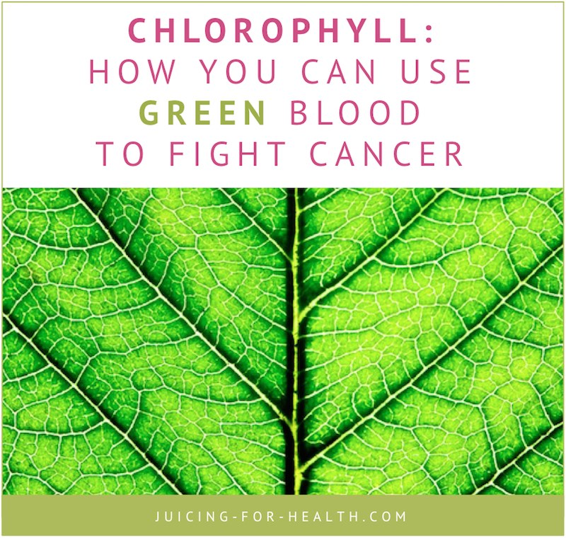 use chlorophyll to fight cancer