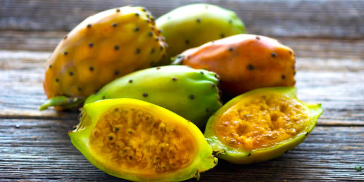 Eat Prickly Pear As A Medicine And Natural Remedy For Almost Any Ailment