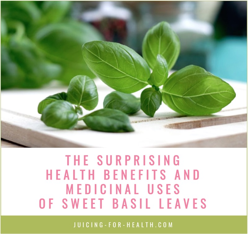 health benefits of sweet basil