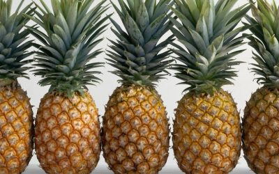 Pineapple Bromelain Prevents Cancer And Kills Tumorous Cancer Cells