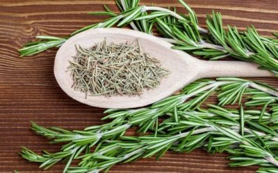 Rosemary Has Anti-Cancer Properties, Protects Brain Health, Prevents Blood Clot