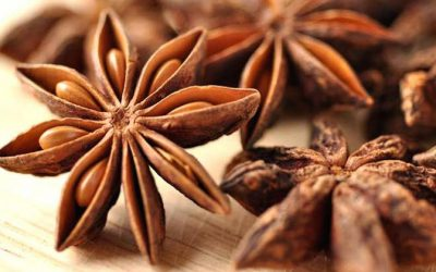 Medicinal Uses And Health Benefits of Star Anise Spice