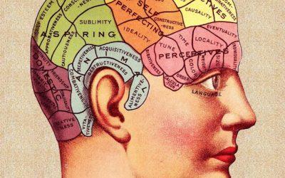 Serious Memory Problems That Are Not Dementia, That Can Be Reversed